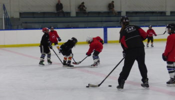 Spring Showcase – Minor Puck Control Clinic